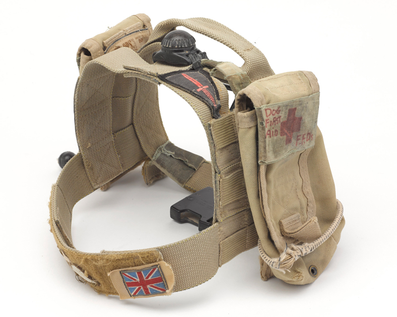 Medical harness worn by Diesel in Afghanistan
