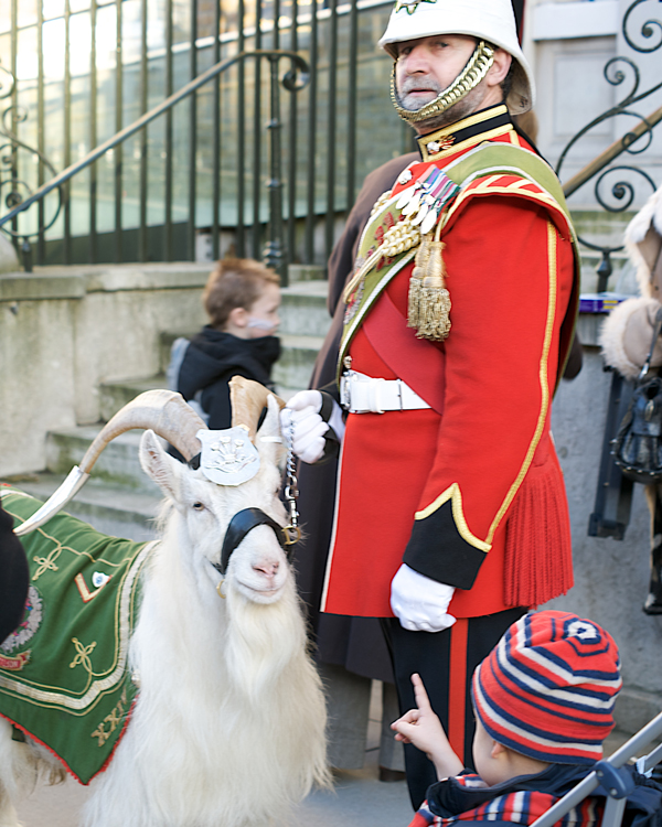 Billy Windsor on ceremonial duties in 2008