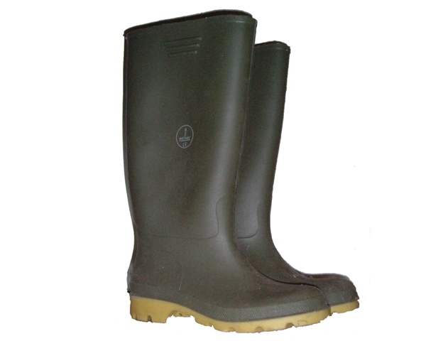 Modern rubber Wellington Boots, 2005