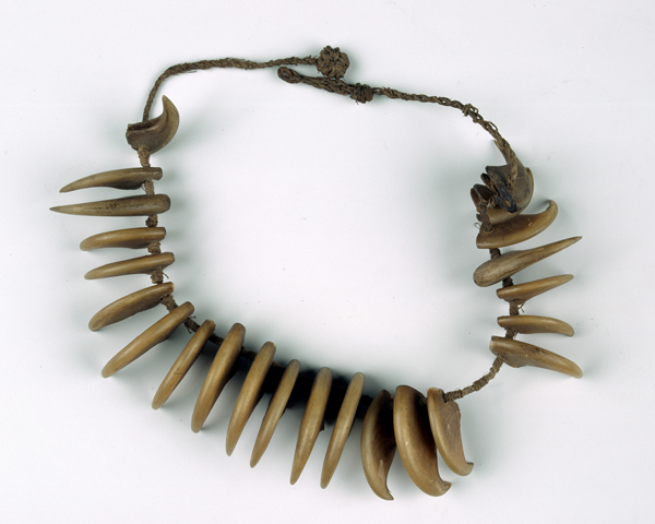 Leopard's claw necklace worn by King Cetshwayo, 1879