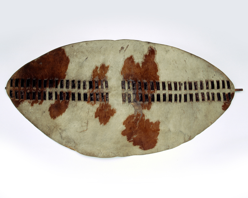 'Ishilunga' shield taken at the Battle of Ulundi, 4 July 1879