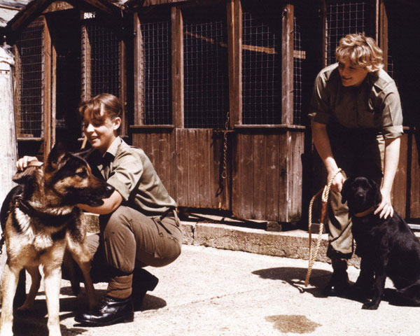 WRAC women on secondment to the Royal Army Veterinary Corps, c1975