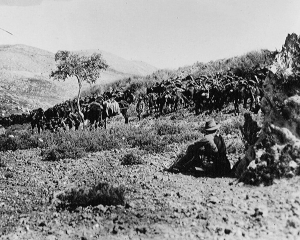 Australian cavalry waiting outside Nablus in Palestine, 1918