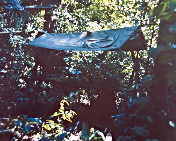 A jungle shelter in Borneo, c1964