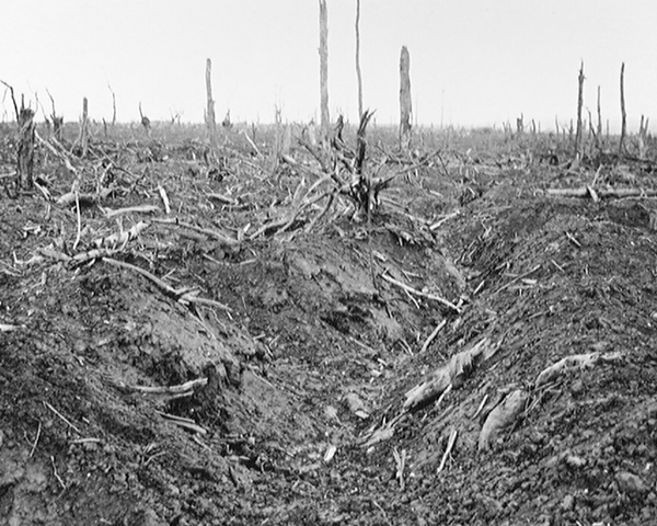 An abandoned German trench in Delville Wood near Longueval, September 1916