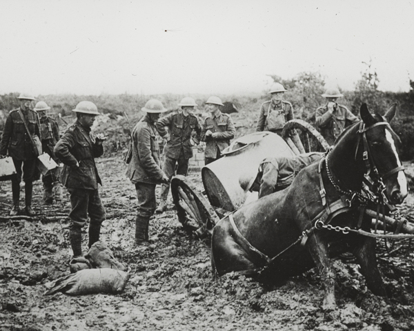A horse-drawn water cart stuck in the mud at St Eloi, 11 August 1917