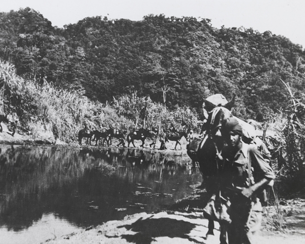 Indian troops during the first Arakan offensive, 1943