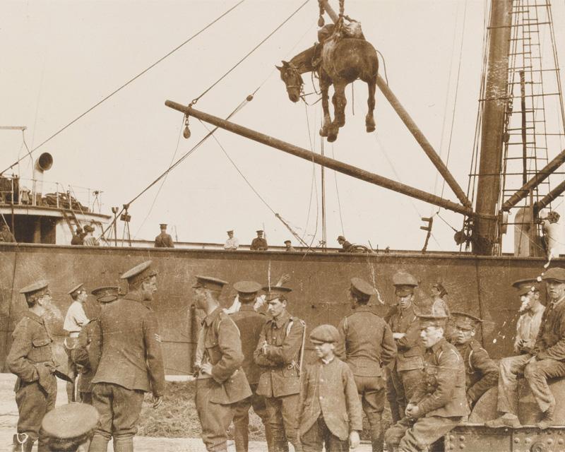 Unloading horses at Boulogne, c1916