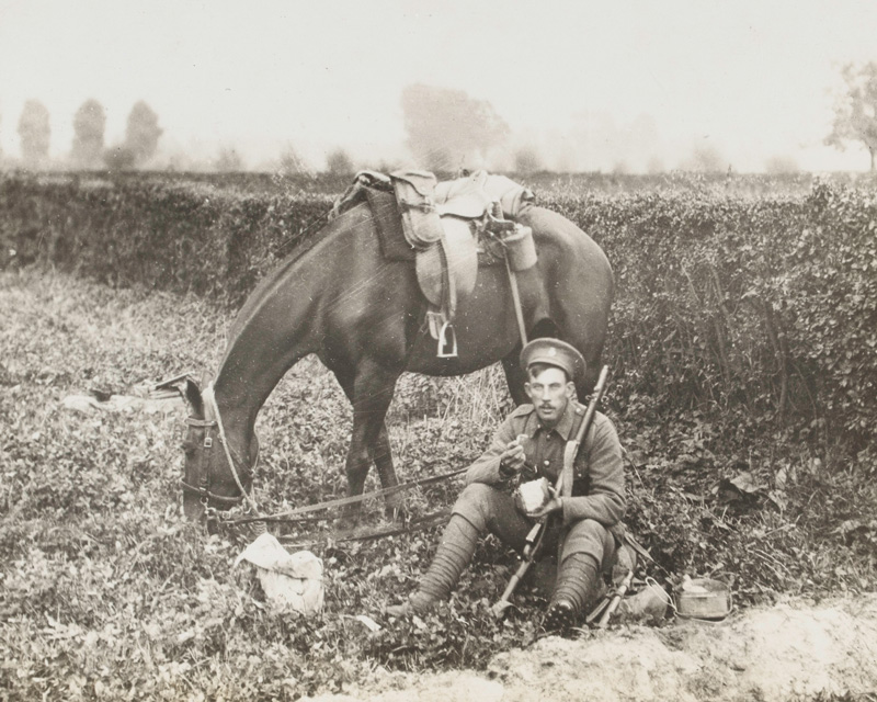 A British trooper and his mount enjoy a meal break, 1914