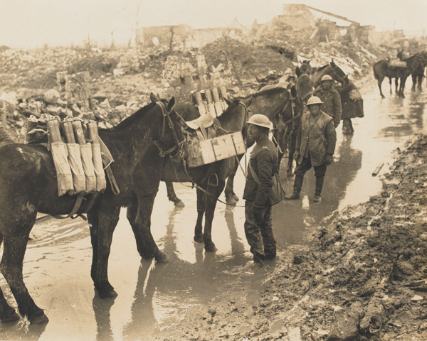 Horses carrying ammunition, c1917
