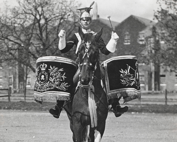 Drum horse of the 17th/21st Lancers, 1922 (c)