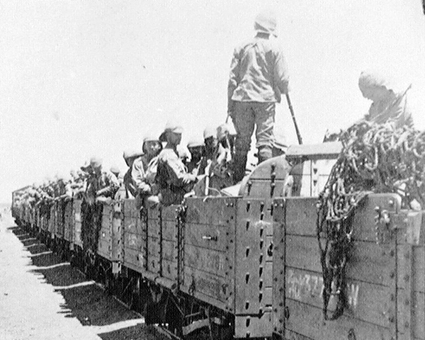 Members of The Wiltshire Regiment moving by train, South Africa, 1900