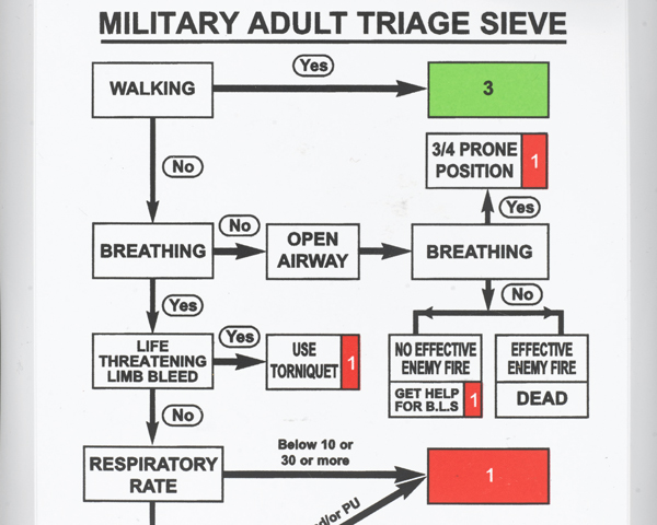 Triage cards used to establish the severity of wounds before transfer to Camp Bastion, c2013