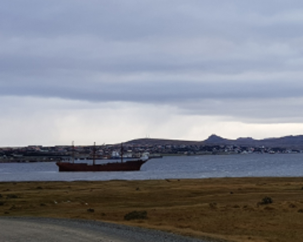 The wreck of the 'Lady Elizabeth' in Stanley Harbour, with the Falklands' capital and Mount Tumbledown beyond, 2018