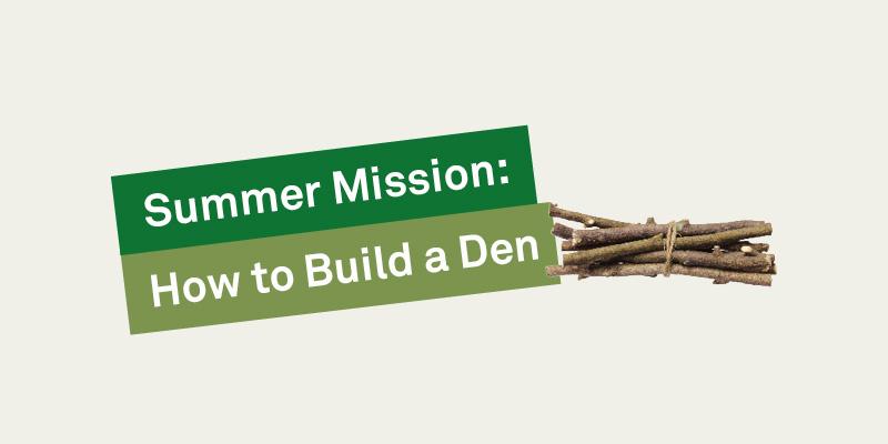 How to Build a Den