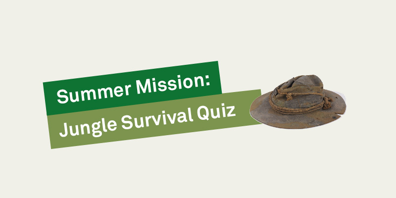 Jungle Survival Quiz