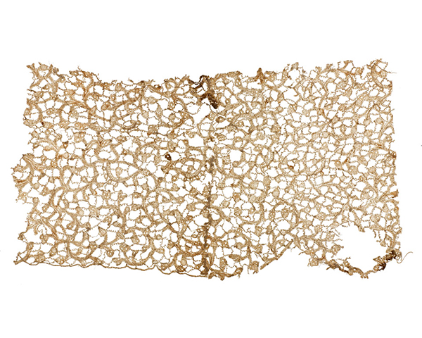 Bloodstained lace from a ruffle worn by King William III