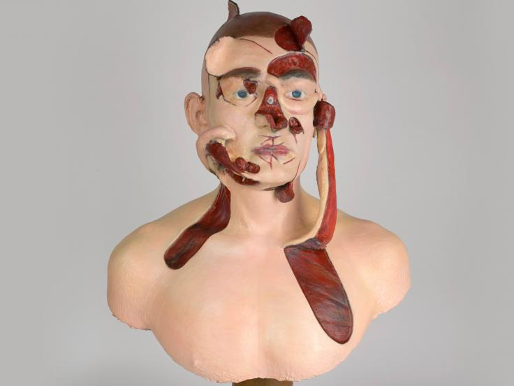 Wax surgery teaching model