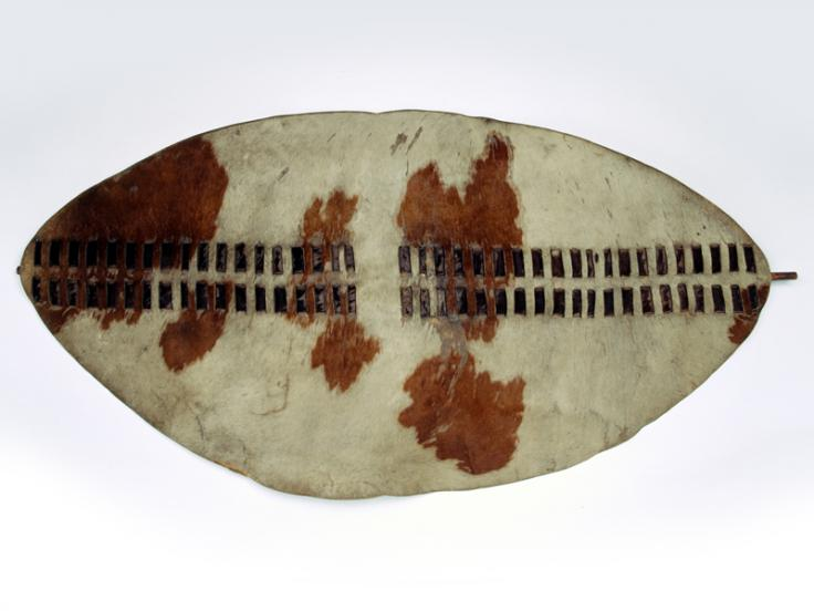 Zulu shield, 1879