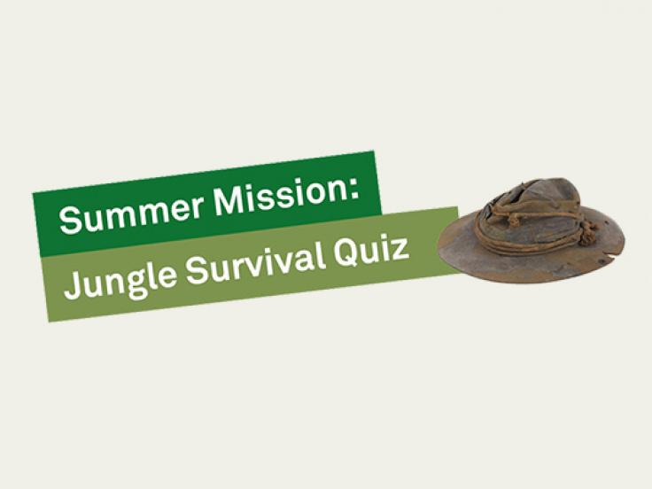 Jungle Survival Quiz
