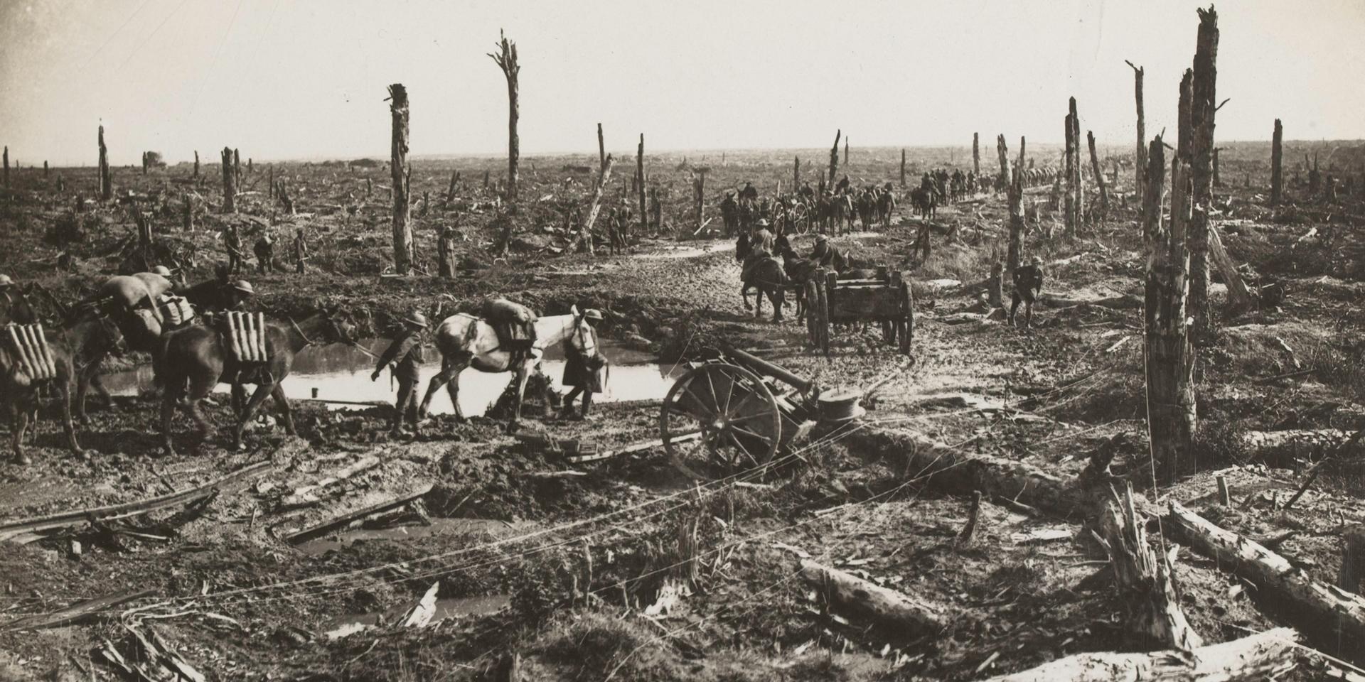 Ammunition convoy, 1916