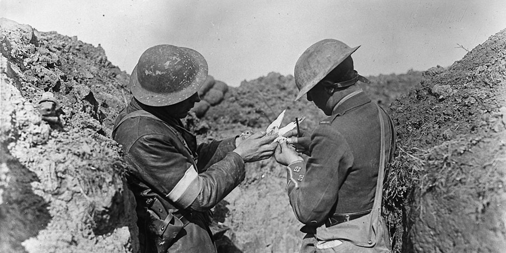 HM Pigeon Service fixing a message to a bird before leaving a trench,  1917