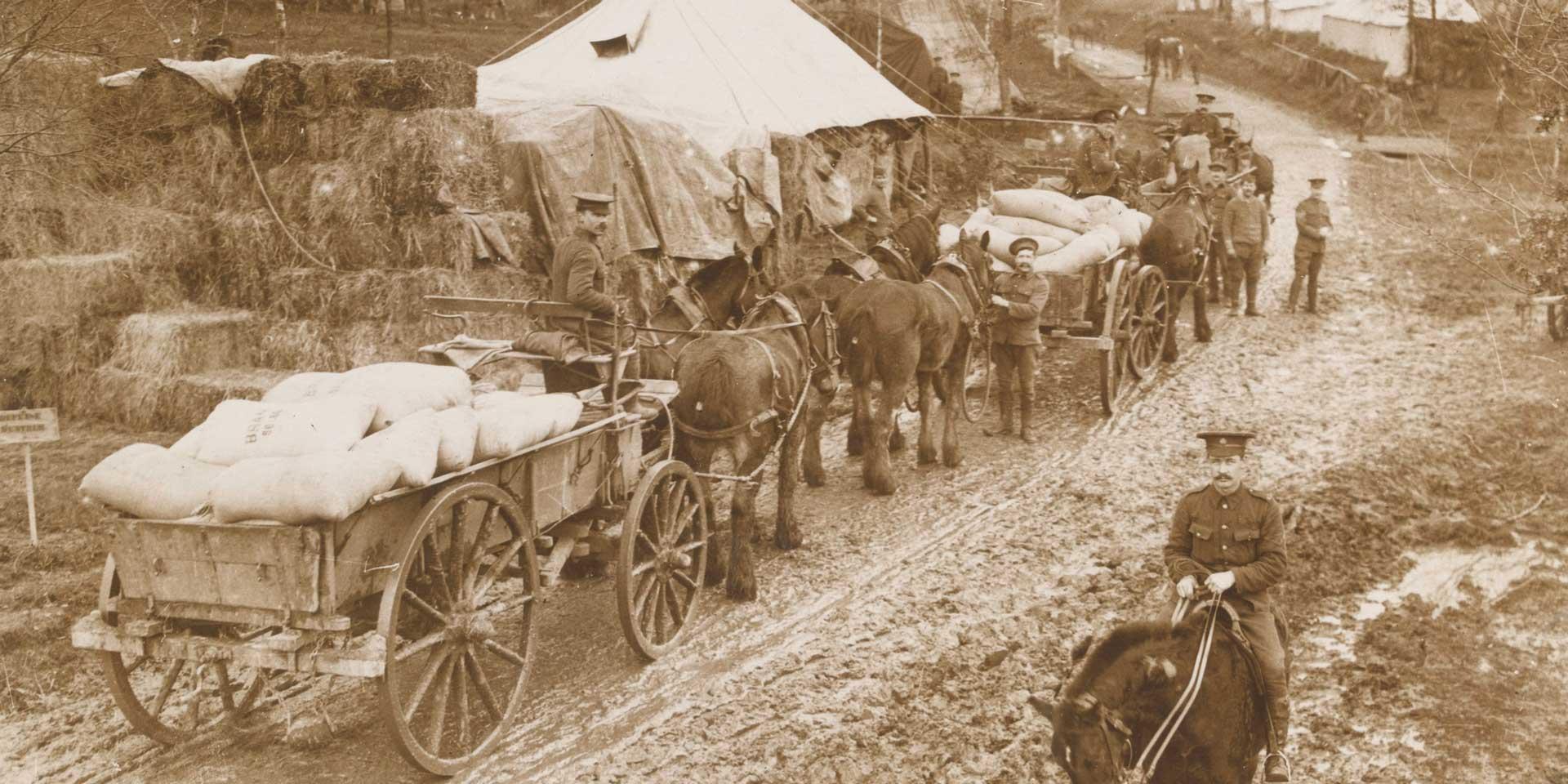 Bringing supplies into camp, c1916