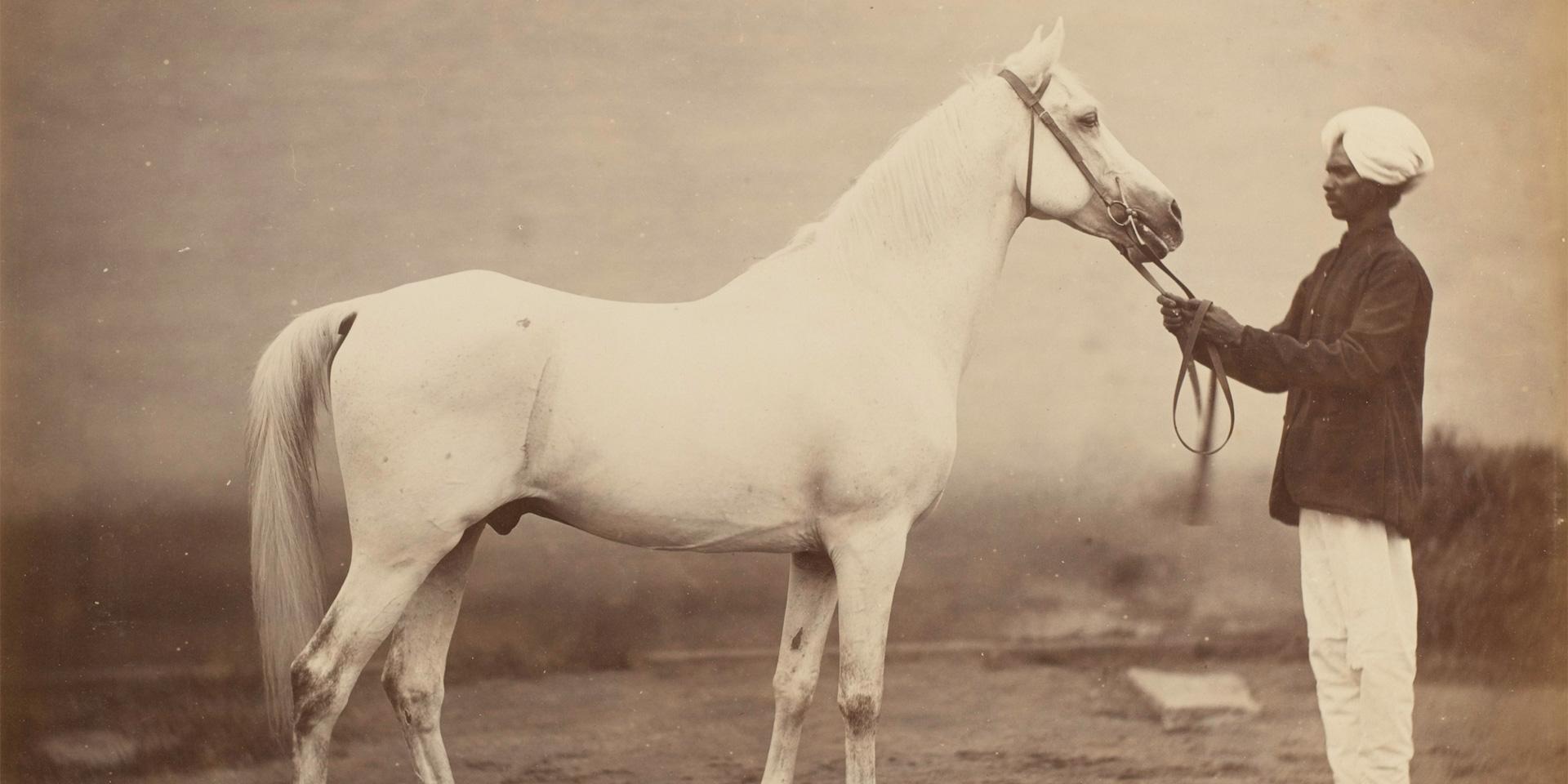 Vonolel with his handler, 1885