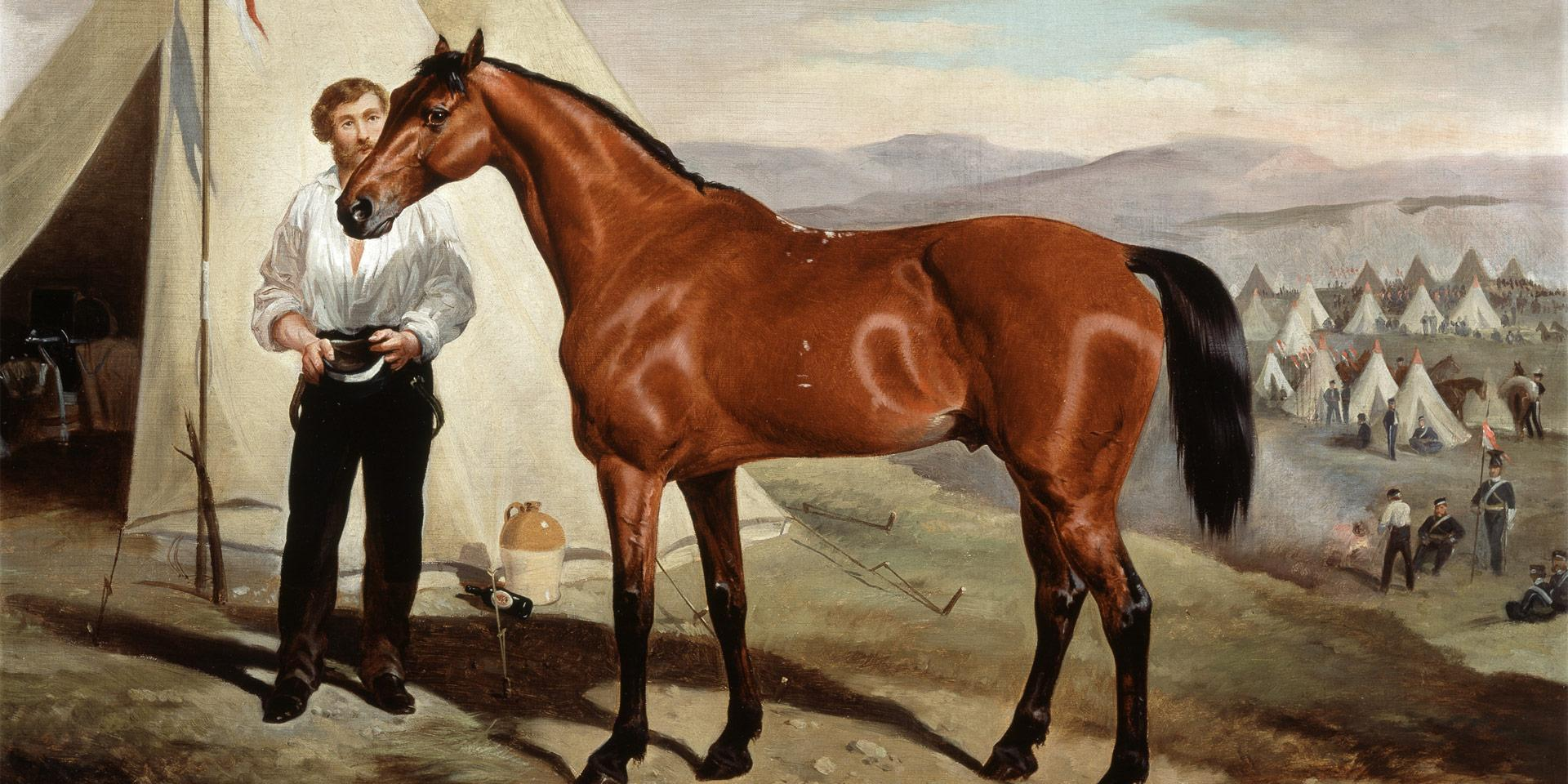 Sir Briggs, the horse of Lord Tredegar in the camp in the Crimea, 1854