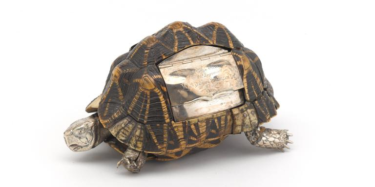 Tortoise snuff box belonging to Joseph Brabazon Pilkington