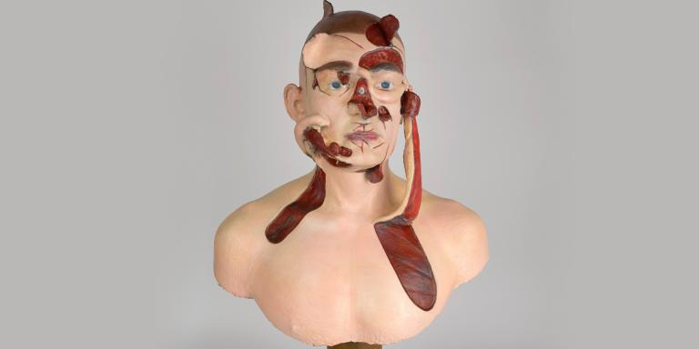 Facsimile of a wax teaching model demonstrating facial reconstruction methods