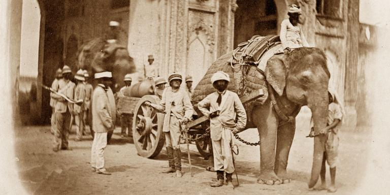 Elephant pulling a field gun during the Indian Mutiny, 1858