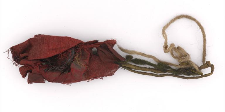 The poppy before conservation