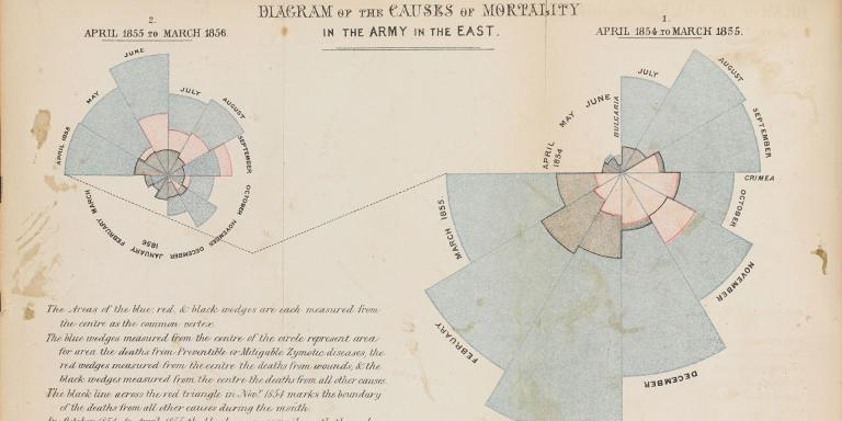 Florence Nightingale's diagram showing causes of death in the Crimea, c1856